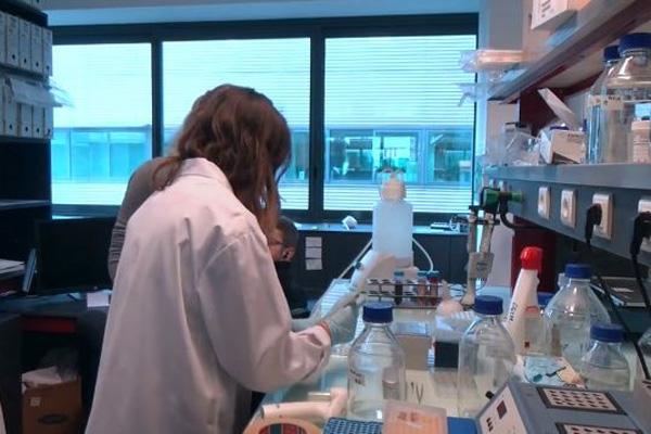 Pháp triển khai hướng nghiệp tại phòng thí nghiệm